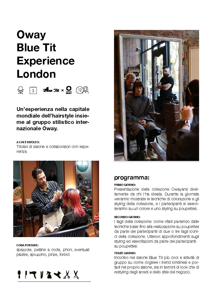 oway-blue-tit-experience-london
